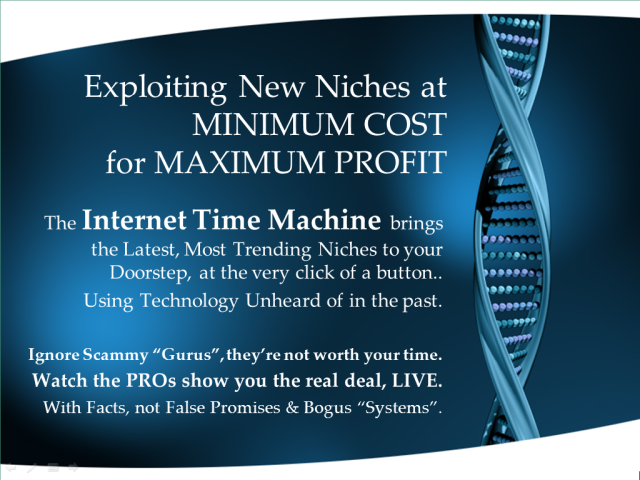 Exploiting_New_Niches_With_The_Internet_Time_Machine_For_Maximum_Profit